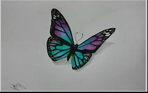 Drawn butterfly colour pencil - Pencil and in color drawn ...