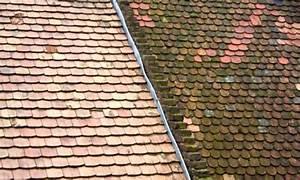 Démoussage toiture : lichens, champignon, prix, devis