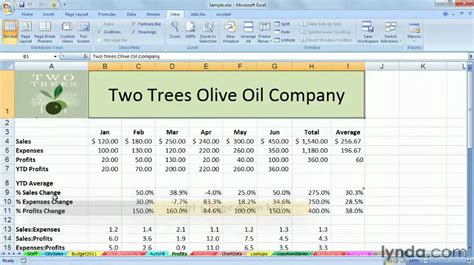 excel tutorial how to manage multiple worksheets lynda youtube