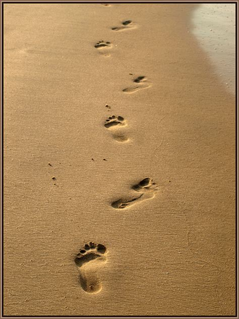 Footprints In The Sand  A Pov