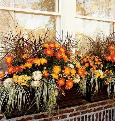 Fall Window Box Flower Ideas