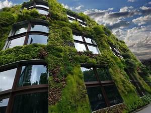 Filet De Camouflage Pour Terrasse : comment v g taliser sa terrasse avec un filet de camouflage ~ Melissatoandfro.com Idées de Décoration