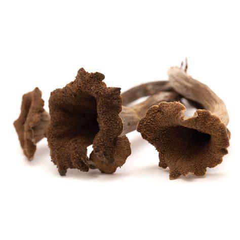 Fall Wild Mushrooms Add Variety Michigan Blue Magazine