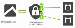 Database Agent Configuration