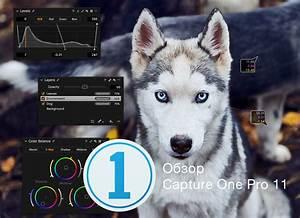 Capture One Pro 11 Manual Pdf  Overtheroadtruckersdispatch Com