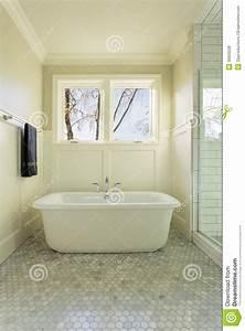 Living Room Light Fixtures Master Bathroom Bathtub With Windows Stock Photo Image
