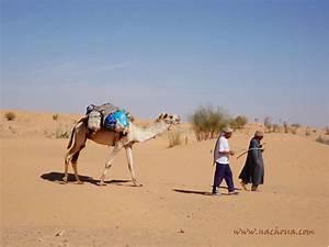 rencontre en tunisie belgique