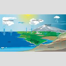 Diagram Of The Water Cycle  Diagram Link