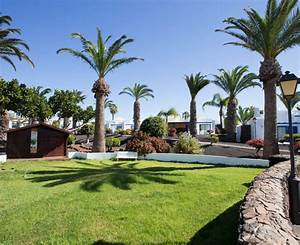 marconfort atlantic gardens bungalows bewertungen fotos With katzennetz balkon mit atlantic garden lanzarote playa blanca
