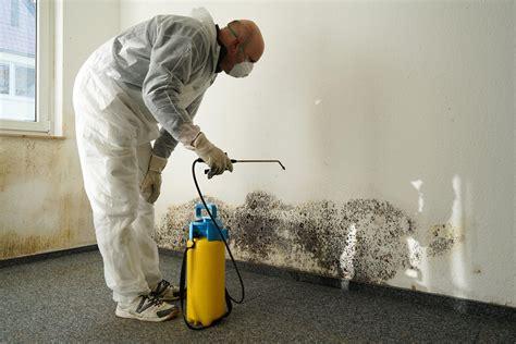 mould removal slc environmental ontario asbestos