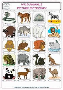 Wild Animals Images For Kids - descargardropbox