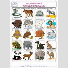 Wild Animals Picture Dictionary Word To Learn Esl Worksheets For Kids And New Learners