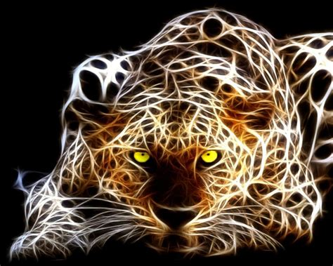 tigre   fondos de pantalla  wallpapers