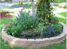 Garden Design With Yard Orb Home Ideas Front Landscape
