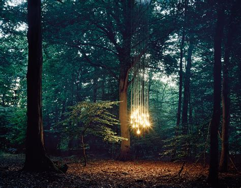 The Magic Of Wood And Light by We Ll Be At Howthe Lightgetsin Again In 2015 Psychologies