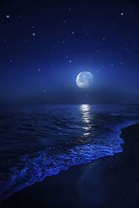 Beach at night … | Starry night pics | Moon,…