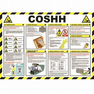 Coshh Poster    Wall Chart