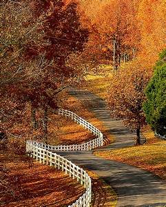 Winding Road | The beautiful road to mspixie's. | Alice ...