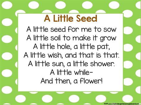 best 25 poems for ideas on 501 | 04c050283ce16c5df6b427a5999839be preschool songs flower poems for preschool