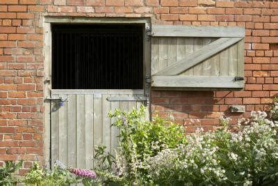 Barn Synonyms by Central Conflict Of Animal Farm Synonym