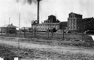 Growing Sugar Beet Factories And Mills Colorado Farmers And Ranchers