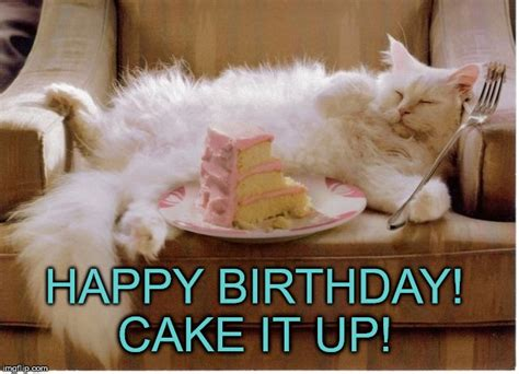 Happy Birthday Cake Meme - birthday cake cat meme www pixshark com images galleries with a bite