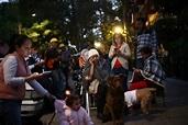 墨國地震2救難人員墜機亡 內政部長與州長倖免 - 中時電子報