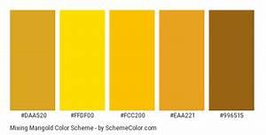 Marigold Color Google Search Color Schemes Gold Color