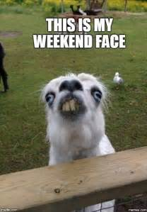 This Is My Weekend Face Meme