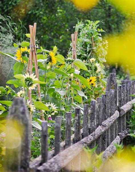 Gorgeous Garden Historic Home by Veggiegardenings Gorgeous Garden At A Historic Home