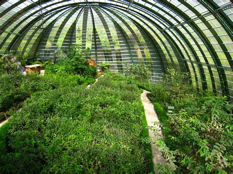 Wavelength Of Green Light by Indoor Farming Sees Light Of Growth Market Research Times
