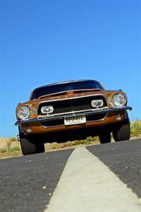Luck—and a Lot of Love—Helped Him Realize His Dream of a 1968 Shelby G.T. 350 - Hot Rod Network