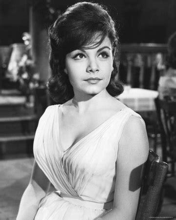 Annette synonyms, annette pronunciation, annette translation, english dictionary definition of annette. Iverson Movie Ranch: Disney legend Annette Funicello dies; looking back on a memorable ...