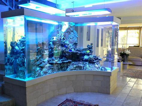 entretien aquarium eau de mer aquarium eau de mer entretien