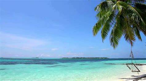 relaxing sounds of waves 2 hours tropical beach