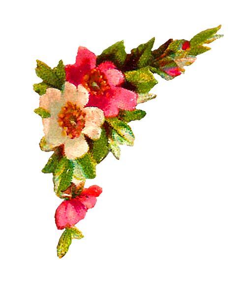 antique images digital flower corner design roses clip
