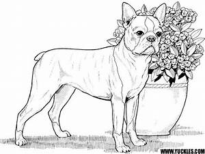 77 best images about Dog pages to color on Pinterest ...