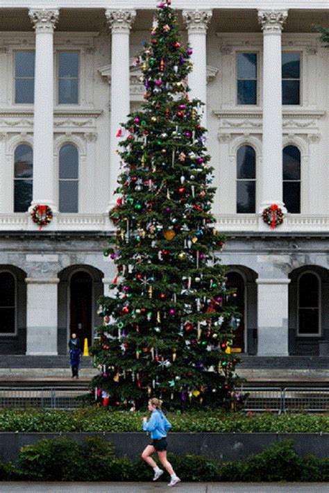 sacramento capital christmas decorations 17 best images about sacramento on trees cas and