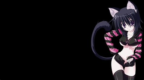 Cat Anime Wallpaper Hd - catgirl wallpaper hd wallpapers anime cat