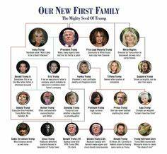 Kennedy Family Tree | The Kennedy Political Dynasty Family ...