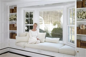 window types styles renewal  andersen  british columbia delta