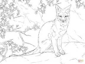 sitting gray fox coloring page  printable coloring pages