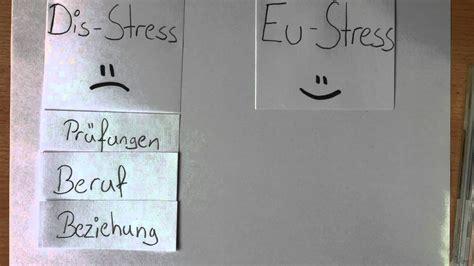 doppelstegplatten welche breiten gibt es stress typen welche stresstypen gibt es