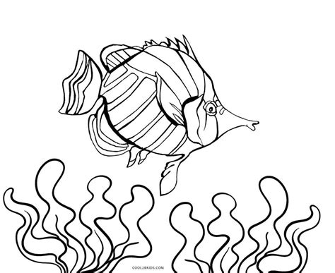 printable fish coloring pages free printable fish coloring pages for cool2bkids