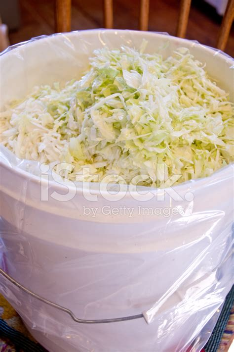 home design contents restoration vertical view of shredded cabbage in a stock photos