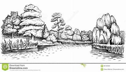 River Landscape Trees Drawn Panoramic Forest Water
