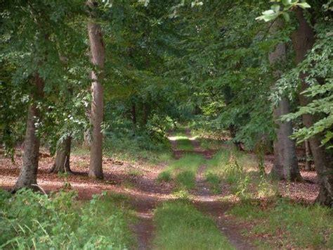 chambres d hotes compiegne forêt de compiègne 9 images de qualité en haute définition