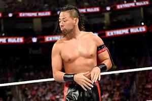Shinsuke Nakamura reveals he cried after losing to Brock ...  Wwe