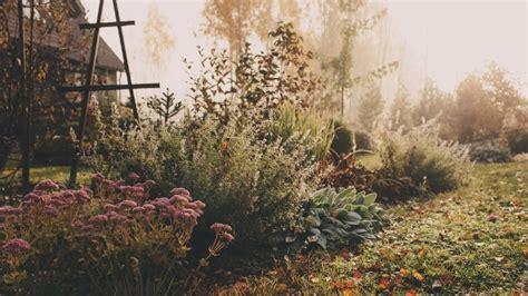 Garten Auch Im Herbst by Tipps F 252 R Die Gartenarbeit Im Herbst Sieben Aufgaben