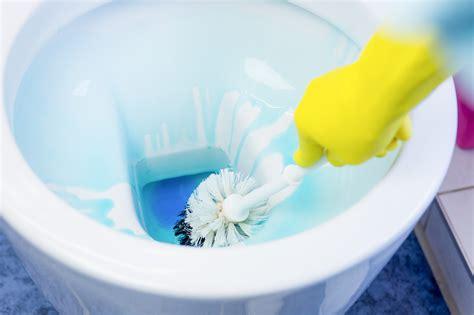 toilette reinigen  tipps tricks haushaltstippsnet